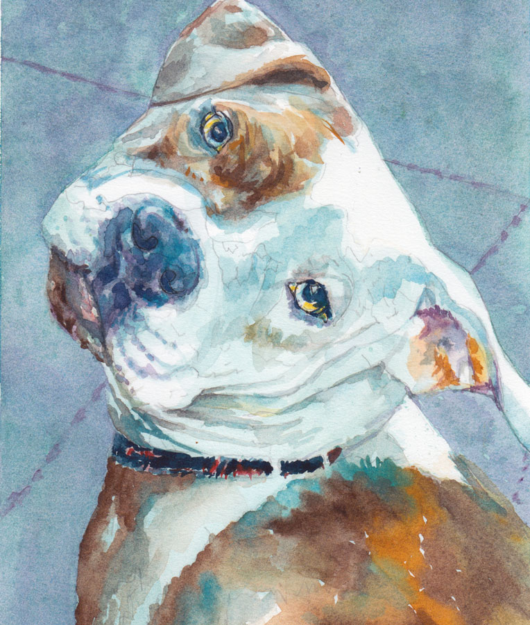 watercolor portrait of cute dog